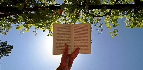 Quiz: what book should you read this summer?