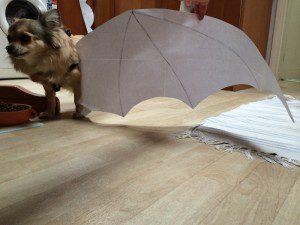 Chloe's paper wings