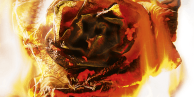 Výsledek obrázku pro elly blake fireblood